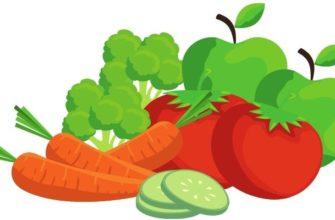 Иллюстрация к песне Овощи и фрукты